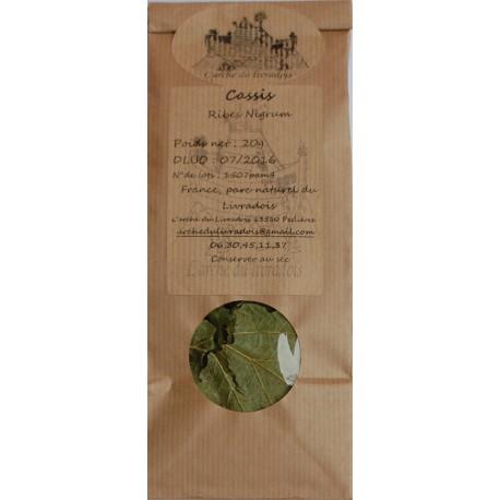 Cassis feuille 20g, Naturel, Tisane, Infusion Ribes nigrum